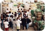 1996 Plástico