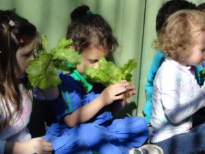 Criança e Meio Ambiente
